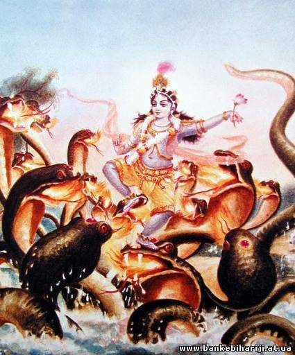 Latest Krishna Black Snake Photo Gallery for free download